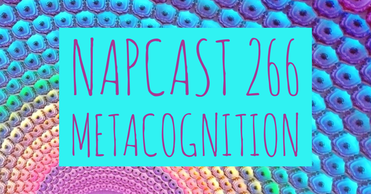 [Mix] NAP DNB presents NAPCast 266 - Metacognition