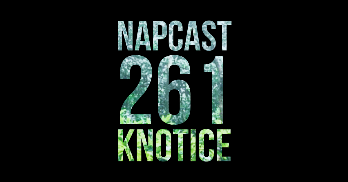 [Mix] NAP DNB presents NAPCast 261 - Knotice