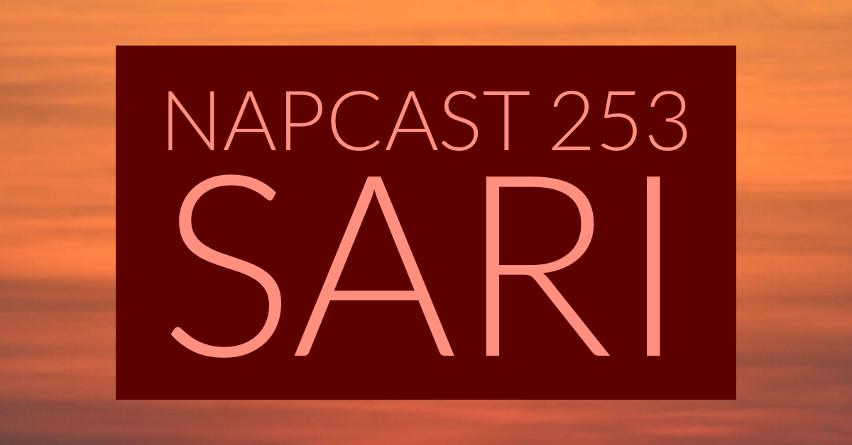 [Mix] NAP DNB presents NAPCast 253 - Sari